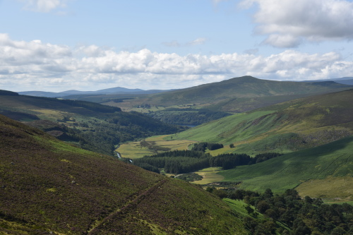 Древнеледниковый ландшафт Ирландии. Полевая экскурсия. Фото С.И.Ларин.